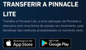 """BÃ""""NUS PINNACLE 2019"""