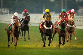 4. A previsão para corridas de Cavalos