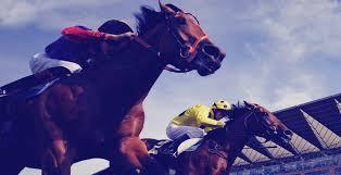 Onde o dutching é bastante usado é nas corridas de cavalos.